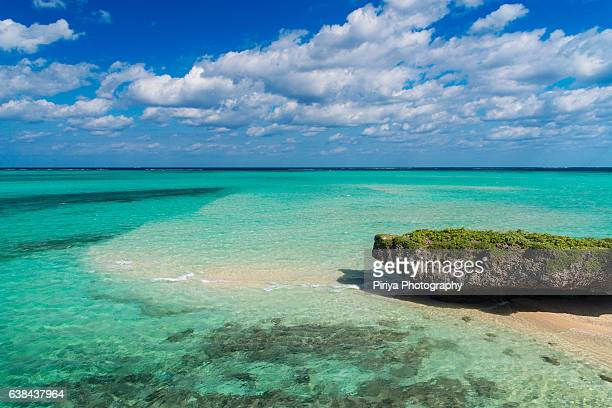 beach at miyako island - iwate prefecture stock photos and pictures