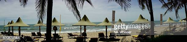 beach at mui ne near phan thieng, vietnam - marina wheeler foto e immagini stock