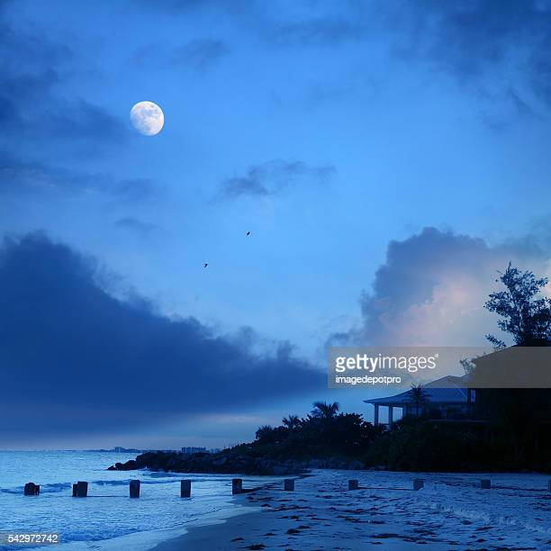 beach at night over cloudy sky and moon