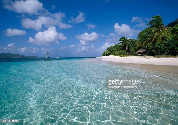 beach at petit st. vincent - saint vincent and the grenadines stock pictures, royalty-free photos & images