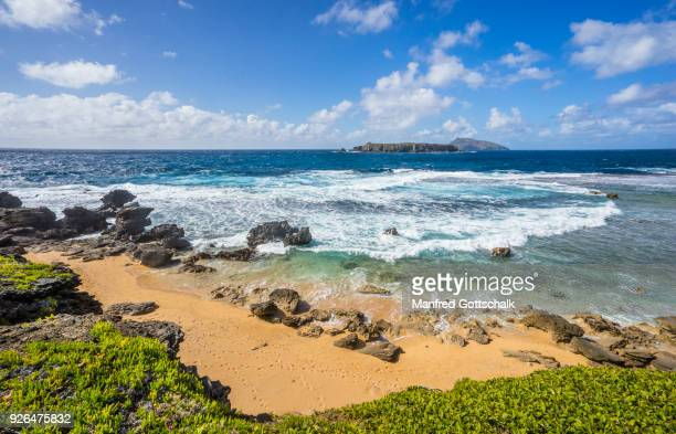 beach at point hunter kingston norfolk island - phillip island stock pictures, royalty-free photos & images