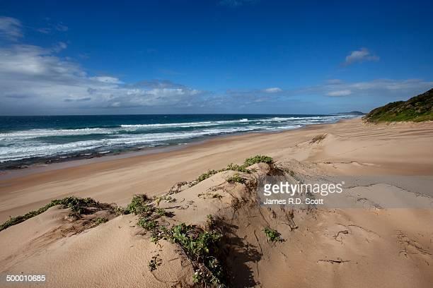 Beach at Ponta Do Ouro, Mozambique