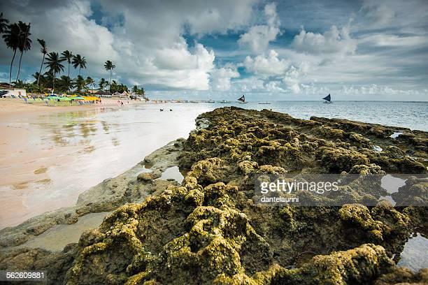 beach at port de galinhas, pernambuco,  brazil - porto galinhas stock photos and pictures