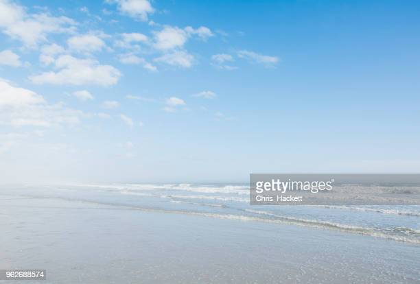 beach at sunny day - hackett stock photos and pictures