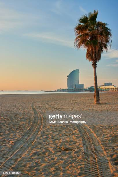 a beach at sunrise in barcelona, spain - la barceloneta stock pictures, royalty-free photos & images