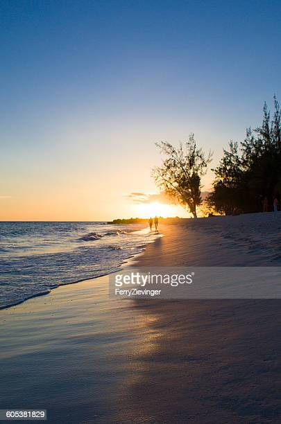 Beach at sunset, Barbados, Caribbean
