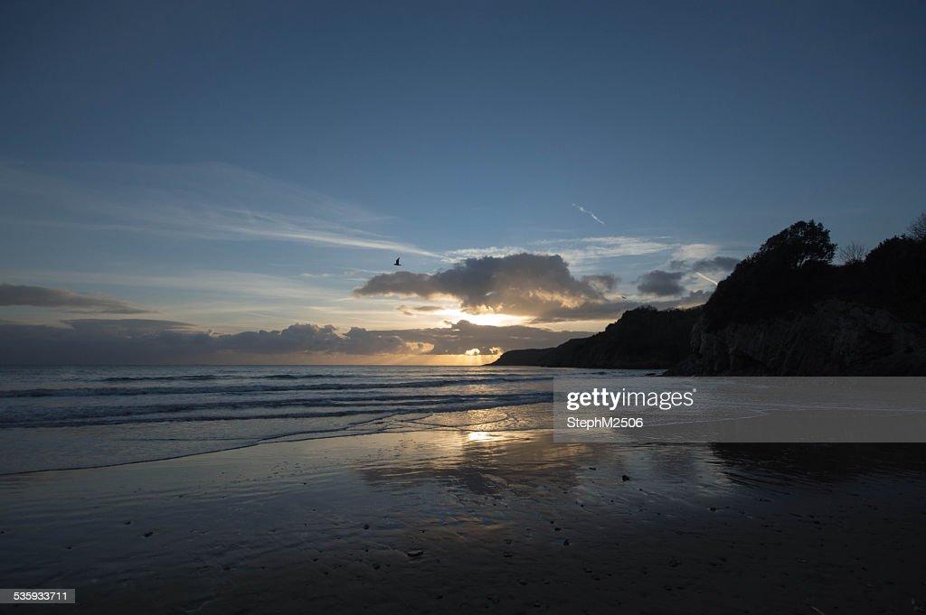 Beach at sunset : Stock Photo