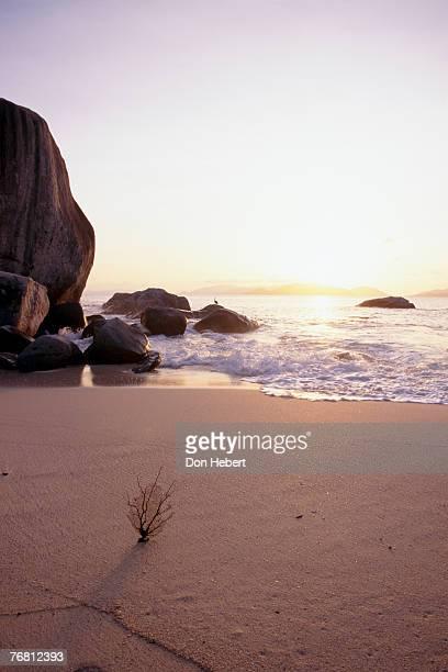 beach at sunset - islas de virgin gorda fotografías e imágenes de stock