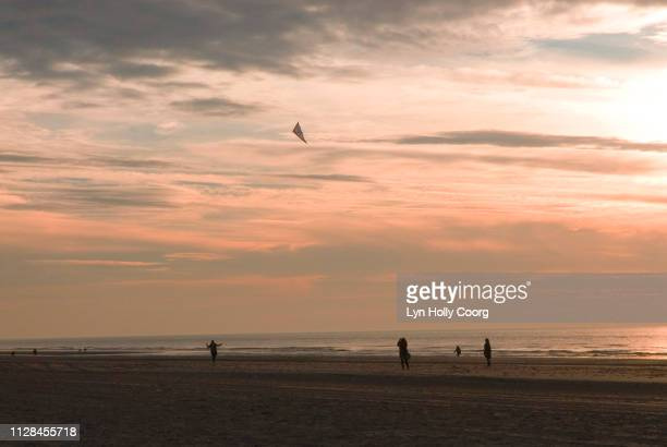 beach at sunset with figures silhouetted flying a kite - lyn holly coorg stock pictures, royalty-free photos & images