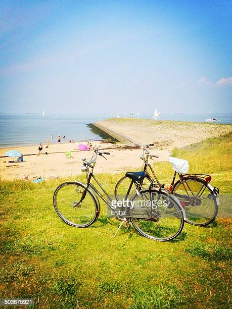 beach at the eastern scheldt - zeeland stock pictures, royalty-free photos & images