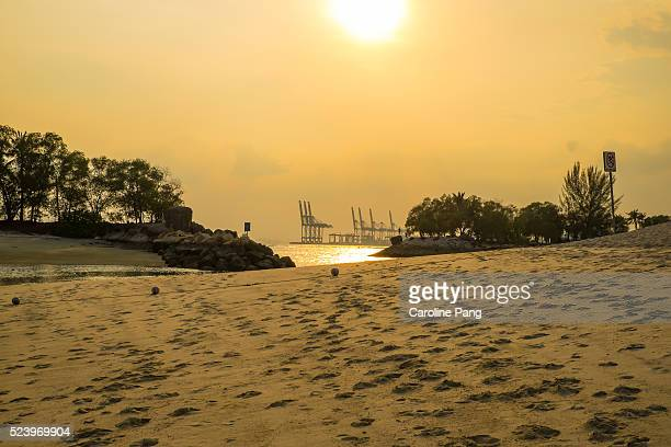 beach at the golden hour. - caroline pang stock pictures, royalty-free photos & images