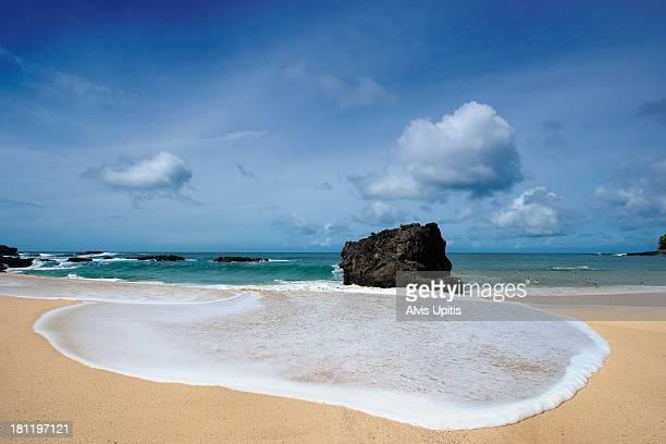 beach at waimea bay on oahu north shore - waimea bay - fotografias e filmes do acervo