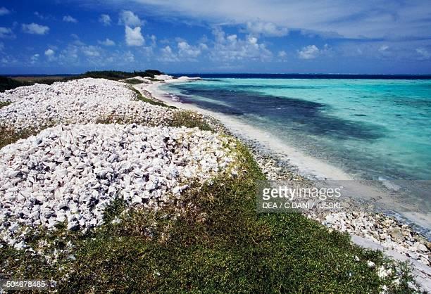 Beach Aves de Sotavento Las Aves archipelago Venezuela