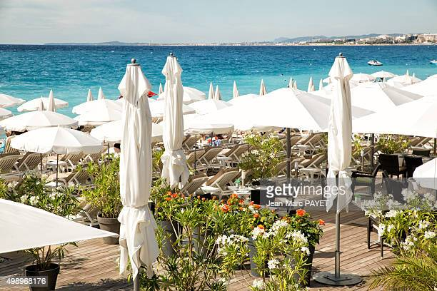 beach bar with a flowered terrace. in french riviera - jean marc payet stockfoto's en -beelden