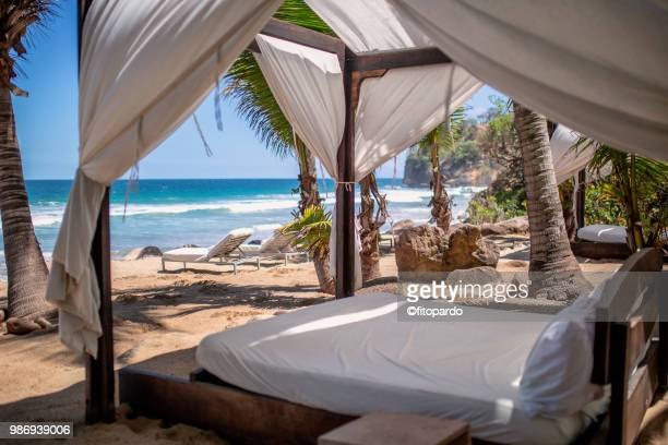 beach bed and beach sun bed - tourist resort stock pictures, royalty-free photos & images