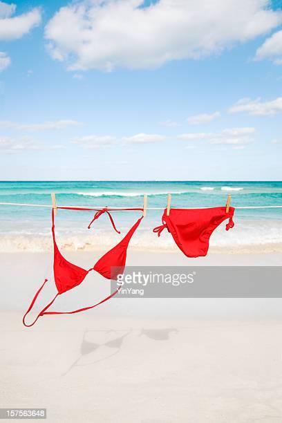 beach bikini hanging on clothesline for caribbean sea summer fun - bikini stock pictures, royalty-free photos & images