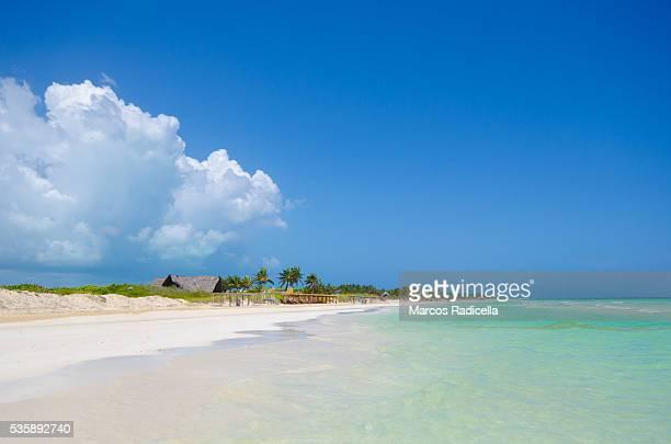 beach, cayo coco, cuba. - radicella photos et images de collection