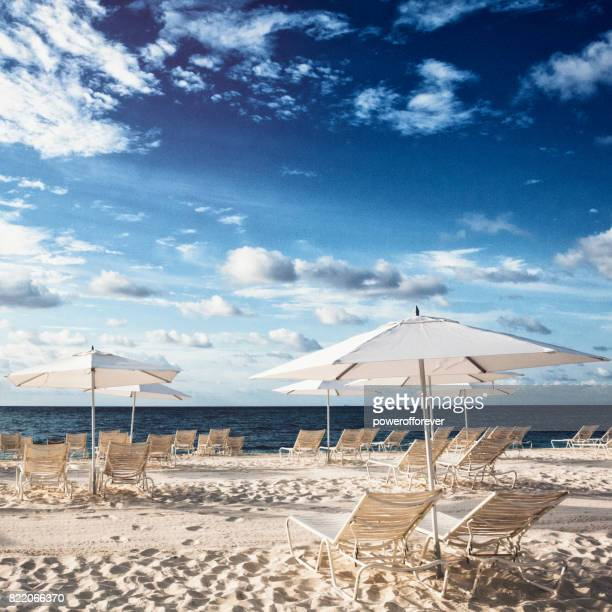 beach chairs on the sand in the bahamas - grand bahama stock photos and pictures