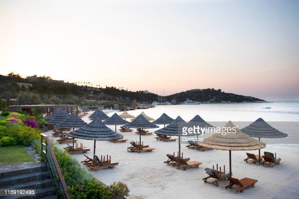 beach chairs with umbrellas and beautiful sand beach - dominican republic stock pictures, royalty-free photos & images