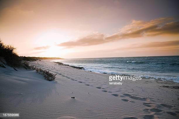 Beach Colorful Sunset