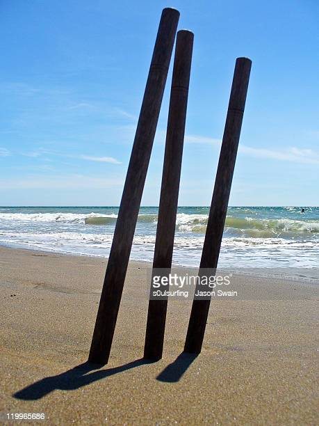 beach cricket - s0ulsurfing stock pictures, royalty-free photos & images