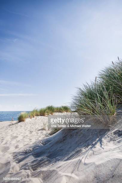 beach, dunes and sea on sylt. - coastal feature stock pictures, royalty-free photos & images