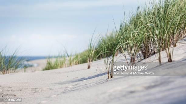 Beach, dunes and sea on Sylt.