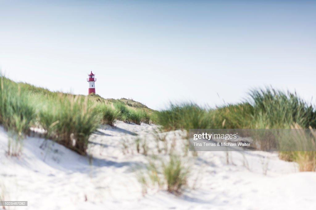 Beach, dunes and sea on Sylt. : Stock Photo