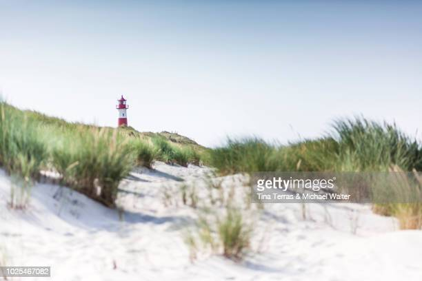 beach, dunes and sea on sylt. - north sea stock pictures, royalty-free photos & images