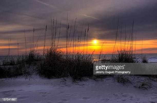 Beach dunes at sunrise