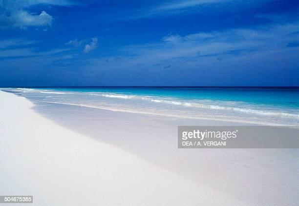 Beach, Eleuthera, The Bahamas.