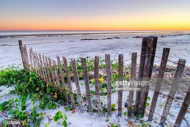 a beach fence at sunset on hilton head island, south carolina. - template_talk:south_carolina stock pictures, royalty-free photos & images