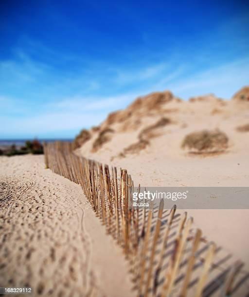 Beach fence tilt-shift