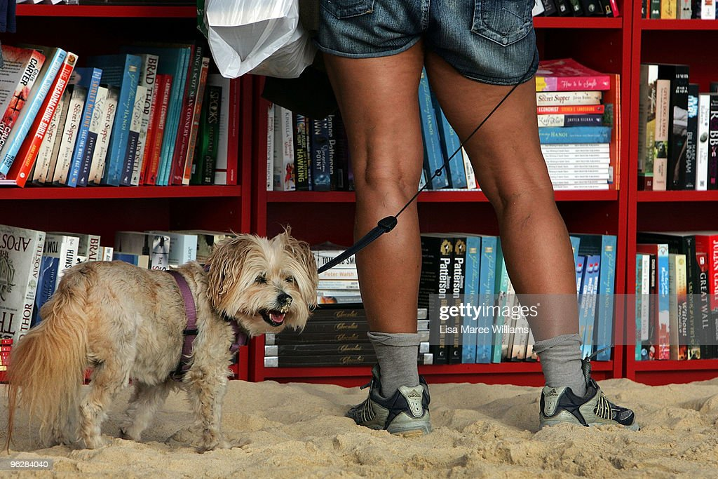 A beach goer selects books with their dog from 30 red Ikea Billy bookcases lined up to form the world's longest outdoor bookcase to celebrate the 30th birthday of the brand's signature furniture piece, at Bondi Beach on January 31, 2010 in Sydney, Australia. The bookcases were filled with thousands of books which beachgoers can swap for one of their own or make a gold coin donation to buy, with proceeds to The Australian Literacy & Numeracy Foundation.