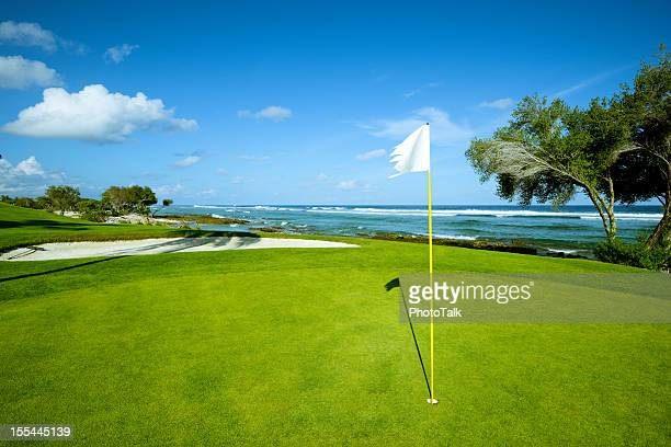 beach golf course on island - green golf course stock photos and pictures