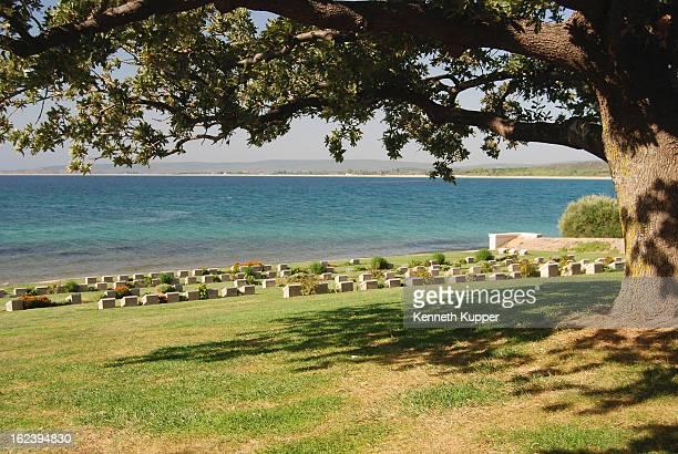 CONTENT] Beach graves graveyard war WWI turkey anzac gallipoli memorial tree canopy grass green ocean mediterranean shadow calm serene