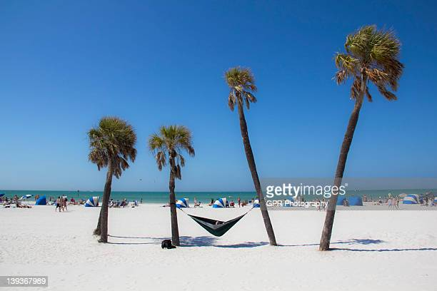 beach hammock - clearwater beach stock pictures, royalty-free photos & images