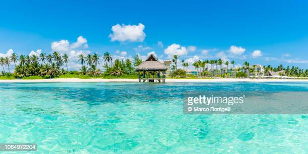 beach hut on a tropical beach, punta cana - punta cana fotografías e imágenes de stock