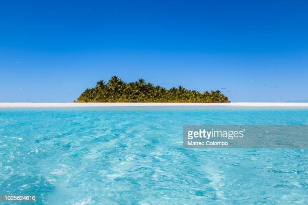 beach in aitutaki lagoon, cook islands - idyllic stock-fotos und bilder