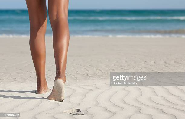 beach in australia. - womens beautiful feet stock photos and pictures