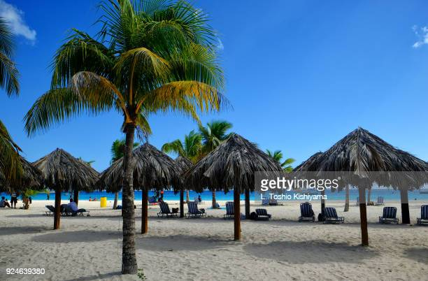 beach in barbados - bridgetown barbados stock pictures, royalty-free photos & images