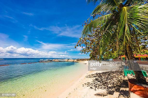 strand von cebu, philippinen - cebu stock-fotos und bilder