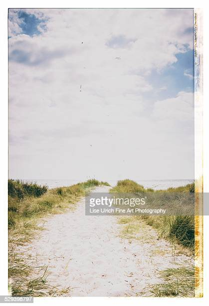 beach in denmark - lise ulrich stock pictures, royalty-free photos & images