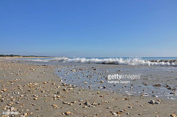 beach in low tide - marée stock pictures, royalty-free photos & images