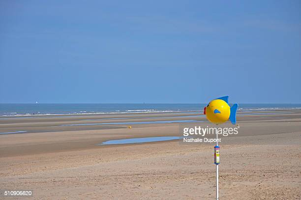 beach in low tide to bray dunes - marée stock pictures, royalty-free photos & images