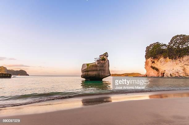 Beach in New Zeland