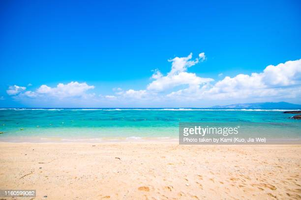 beach in okinawa - zakenman stock pictures, royalty-free photos & images