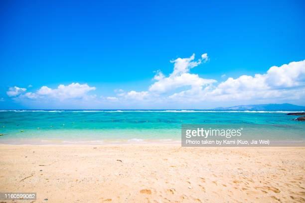 beach in okinawa - 夏 ストックフォトと画像