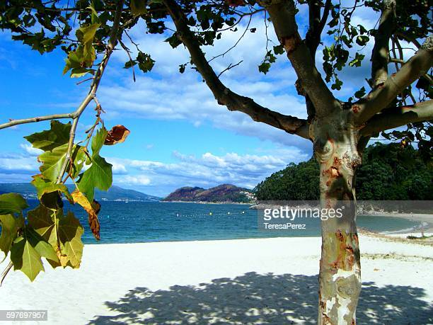 beach in pontevedra - pontevedra province stock pictures, royalty-free photos & images