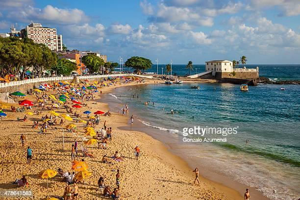 beach in salvador. - サルバドール ストックフォトと画像